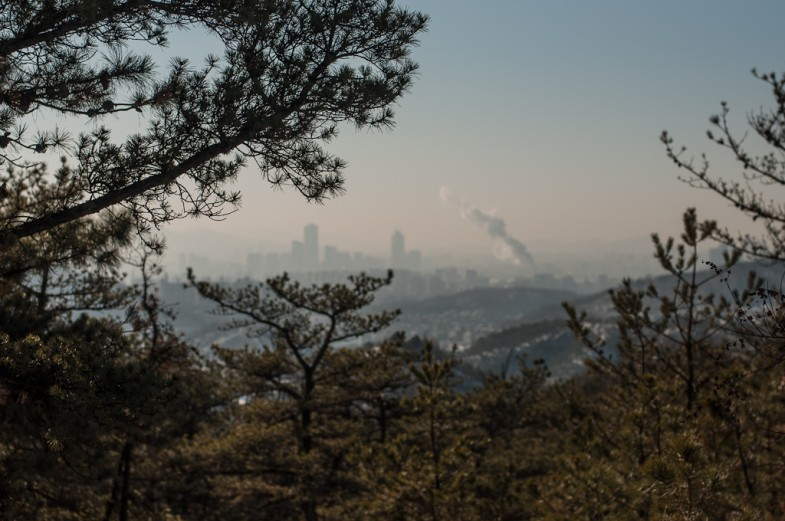 Trees and cityscape from Nokbeon, looking towards the urban center of Seoul, South Korea (2013, P.M. Lydon)