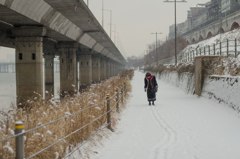 New Year's Walk along the Han River in Seoul (2013, P.M. Lydon)