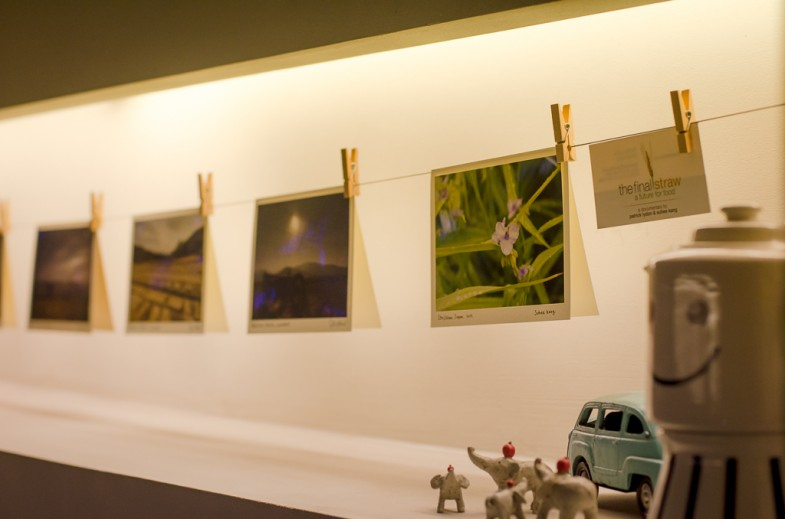 "Patrick and Suhee's ""Nature Farming"" photo cards on display at Cafe Oui in Seoul!"
