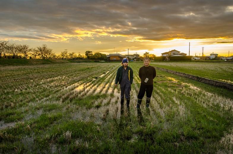 Fuminori Yamamoto and his son, Daisuke, at their natural no-till rice field in Inashiki, Japanv