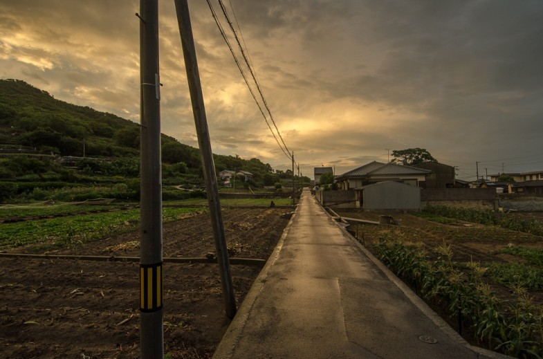 Farmland on Megijima during sunset.