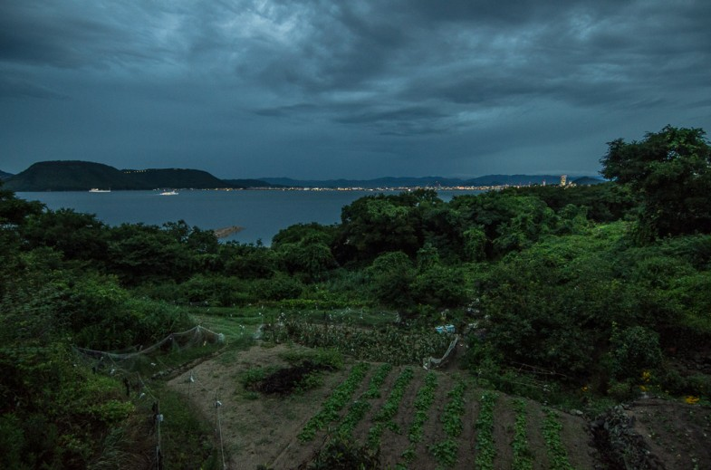 One of Megijima's hillside farms with Takamatsu in the distance.