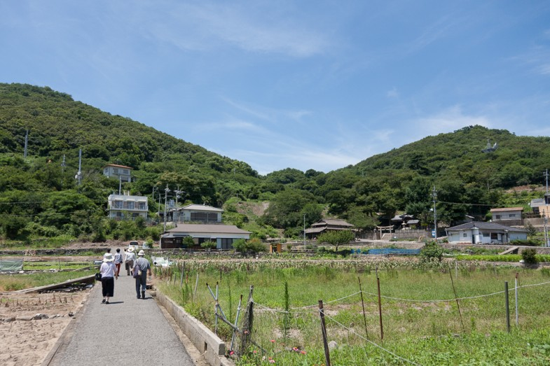 Megijima's small townside farmland