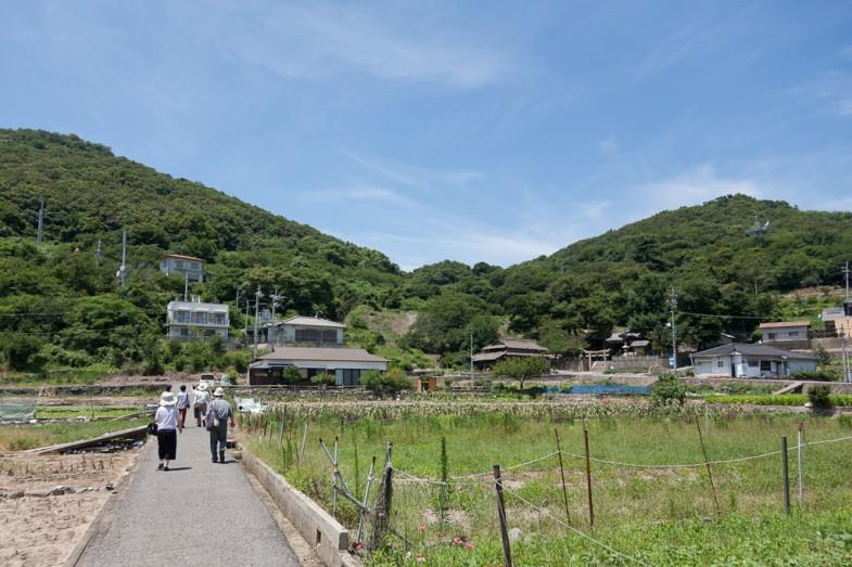 Megijima's small townside farmland