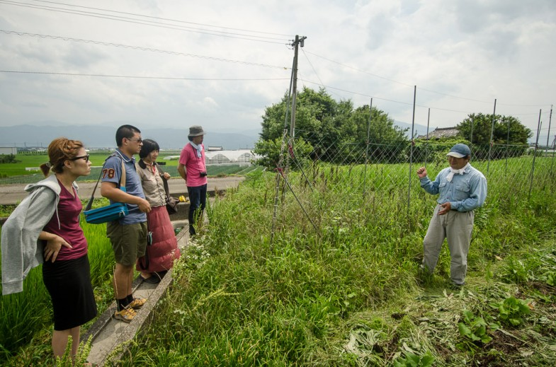 Okitsu natural farm tour with team members from Aichi University of Arts